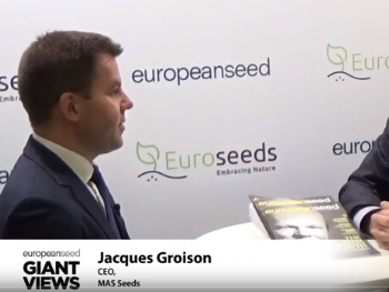 Giant Views Video Interview of Jacques Groison